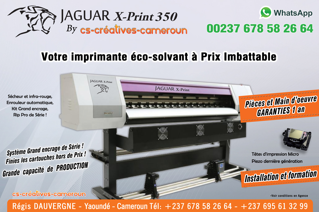 Imprimante Eco-Solvant DX12